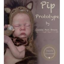 PIP BY CASSIE BRACE PROXIMA PREVENTA