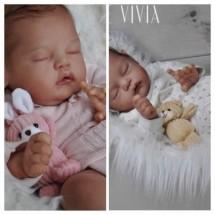 VIVIA BY MELODY HESS PREVENTA
